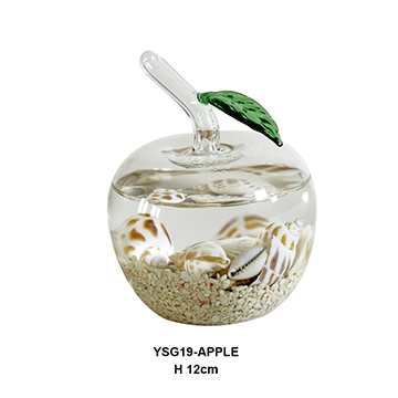YSG19-APPLE